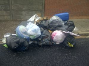 Rubbish dumping in Bournbrook Sept 2012
